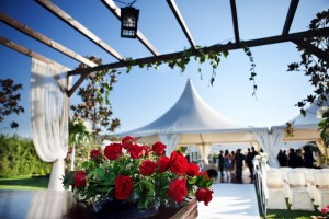 Ceremony and Outdoor Wedding Entertainment